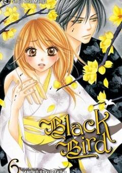 BLACK_BIRD_6